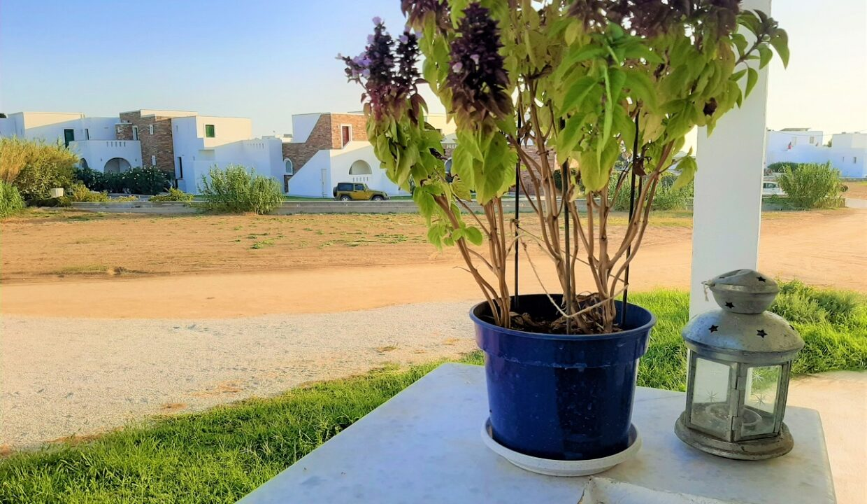 island rooms & studios naxos (11)