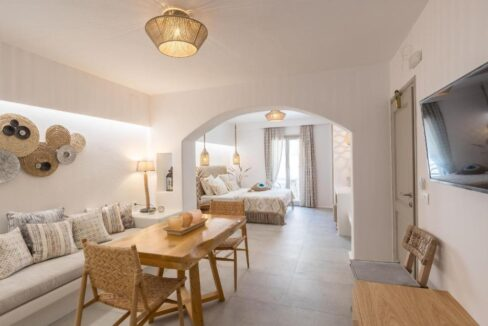 executive suite villa flora hotel (8)