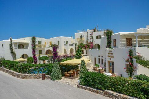 hotel proteas naxos (8)