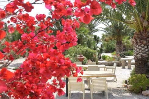 medusa beach resort & suites naxos (1)