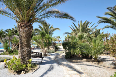medusa beach resort & suites naxos (3)