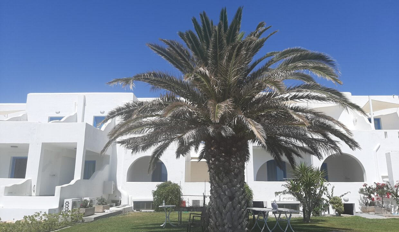 liana hotel & spa naxos (26)