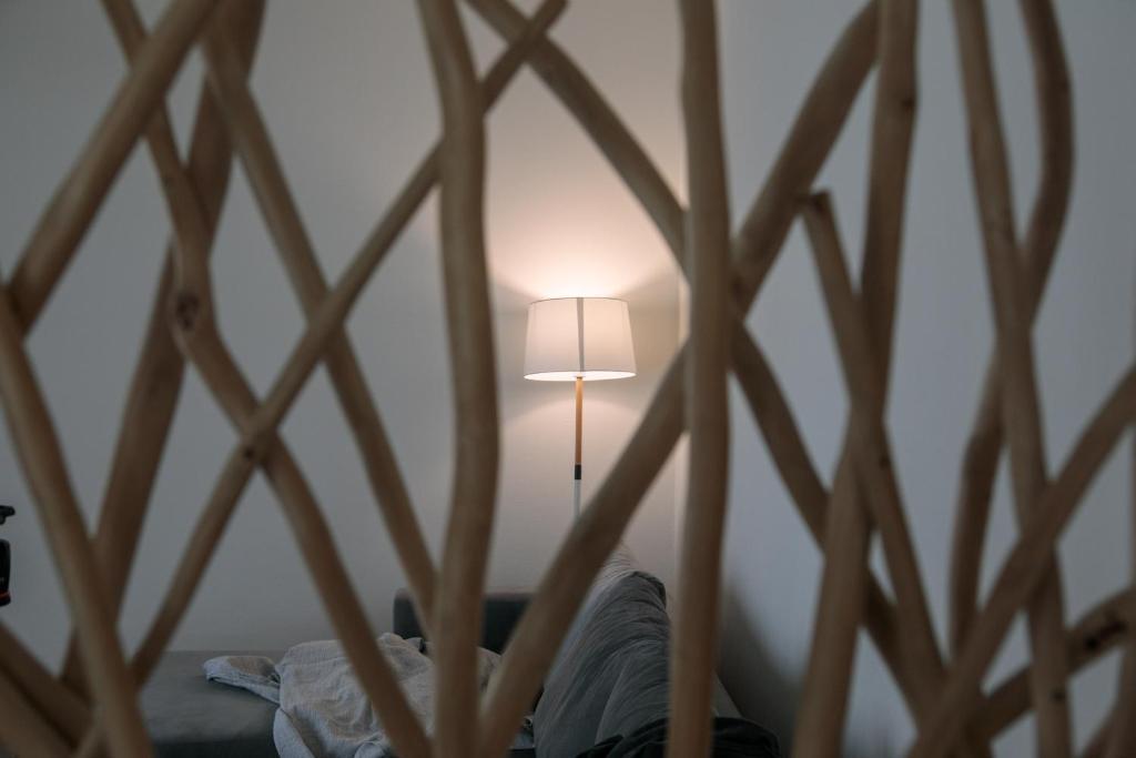 Superior apartment (4)