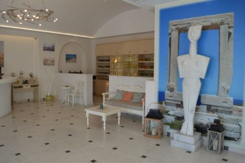 naxos island hotel (18)